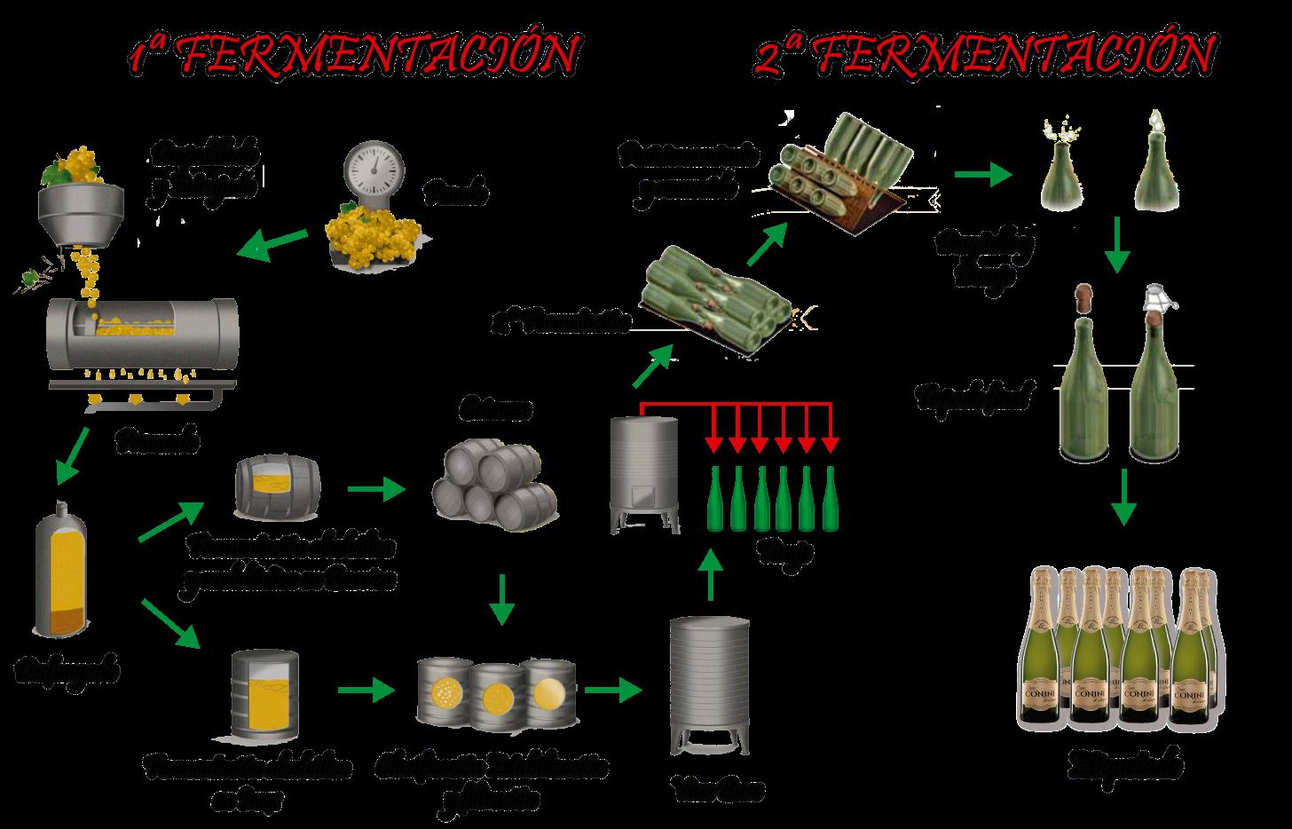 elaboracion-vino-espumoso